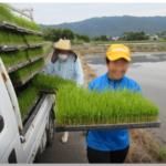 就労継続支援B型事業所におけ る農作業向上について